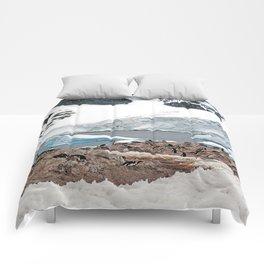 Gentoo Penguin Colony Comforters