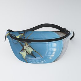 Heaven And Earth Fanny Pack