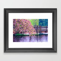 Bridge and Cherry Tree at Crystal Springs Rhododendron Garden, Portland Framed Art Print
