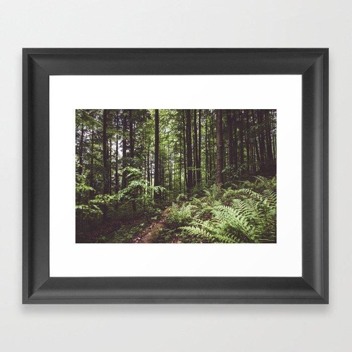 Woodland - Landscape and Nature Photography Gerahmter Kunstdruck
