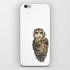 Northern Spotted Owl. iPhone & iPod Skin