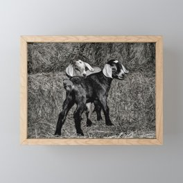 Baby Goats on the Hay Framed Mini Art Print