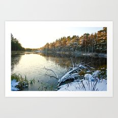 Frosted Sunset Art Print