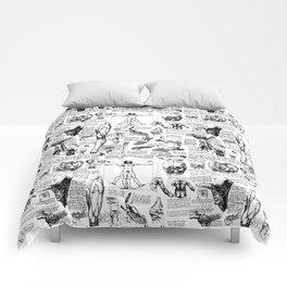 Da Vinci's Anatomy Sketchbook Comforters