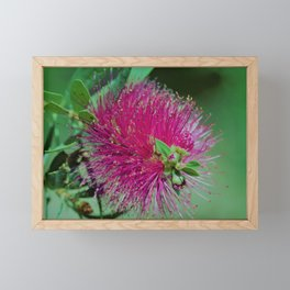 Neon Pink & Green Floral by Reay of Light Photography Framed Mini Art Print
