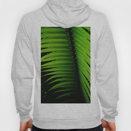 Palm tree leaf - tropical decor Hoody