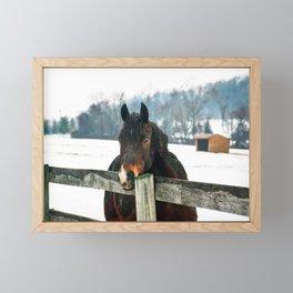 Thoughtful Horse Framed Mini Art Print