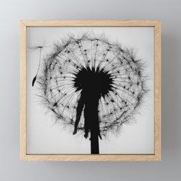 Dandelion Silhouette ii Framed Mini Art Print