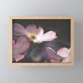 Dogwood Flower Framed Mini Art Print