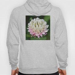 Flower | Flowers | One Clover Flower | Nature Photography | Nadia Bonello Hoody