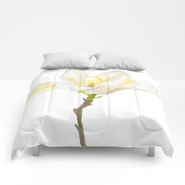 White Magnolia Watercolor Comforters
