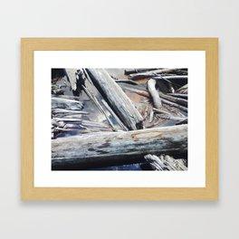 Forest Trees Framed Art Print