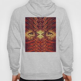 Crossing the Event Horizon Hoody