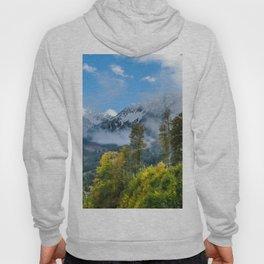 Mount Fisht Hoody