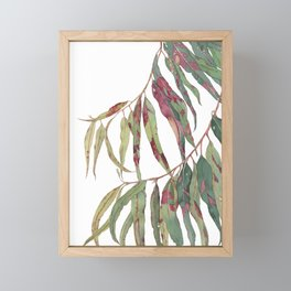 A touch of red - watercolour of eucalyptus branch Framed Mini Art Print