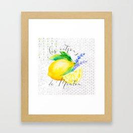 Les Citrons de Menton—Lemons and Lavender, Provence Framed Art Print