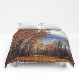 Autumn Creek Comforters