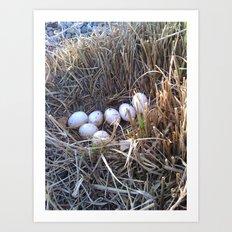 Duck Nest Art Print
