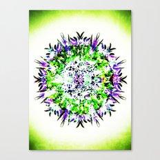 HASI Canvas Print