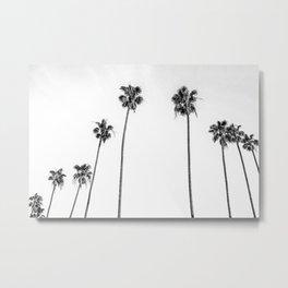 Black + White Palms Metal Print