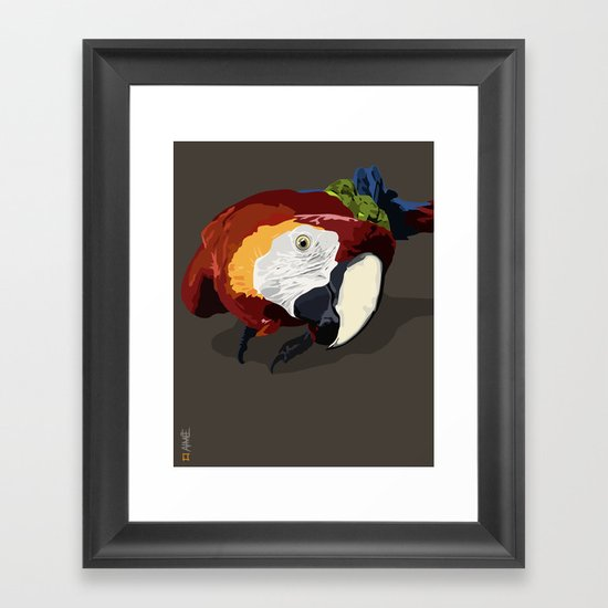 Macaw Framed Art Print