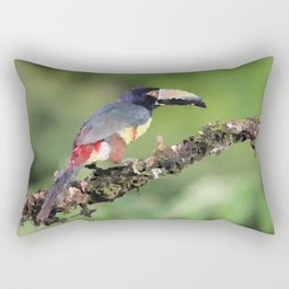 Toucan sitting on branch Costa Rica Rectangular Pillow