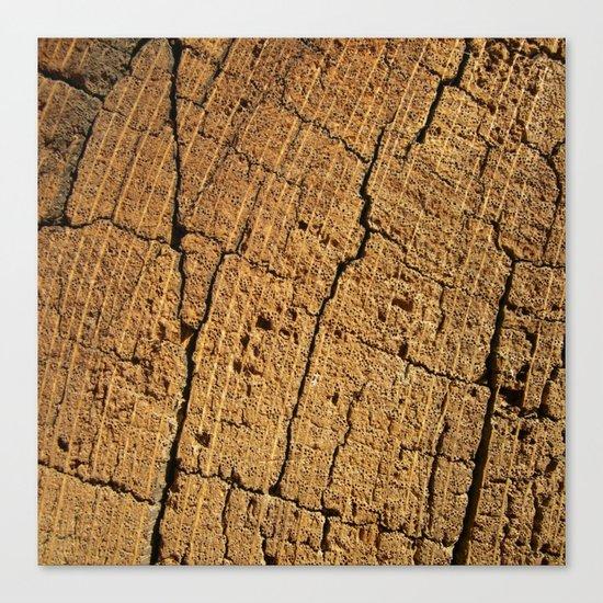 old oak wood I Canvas Print