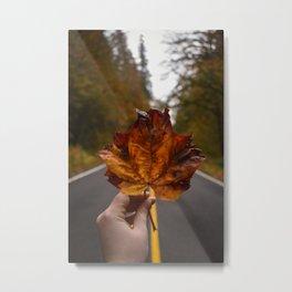 Leaf on the Road Metal Print