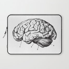 Human Brain Sideview Anatomy Detailed Illustration Laptop Sleeve