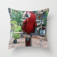 Macaw I Throw Pillow