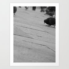 Bird's eye view Saint Mark's Square Art Print
