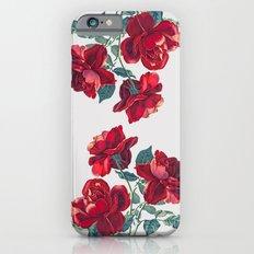 Red Roses Slim Case iPhone 6
