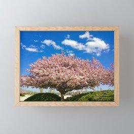 Pink flowering tree Framed Mini Art Print