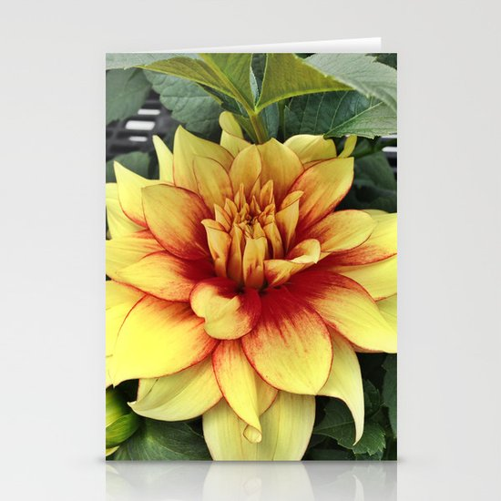 Flower of Hope Stationery Cards