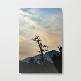 A Peaceful Evening Metal Print