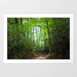 North Carolina Trees Art Print