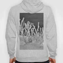 Frosted Plants 2 Hoody