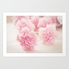 Pale Pink Carnations 2 Art Print