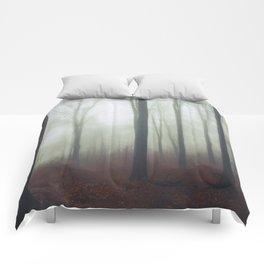 undisturbed Comforters