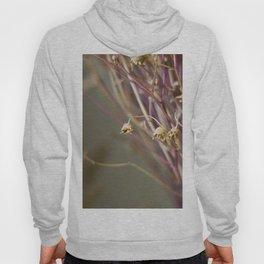 Dry flowers Hoody