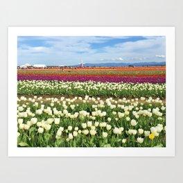 Woodburn Tulips Art Print