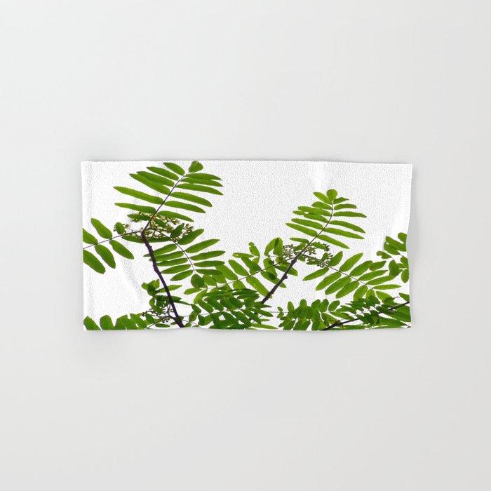 New Green Leaves Of A Rowan Hand & Bath Towel