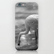 Flamingo, Fuerteventura. Slim Case iPhone 6s