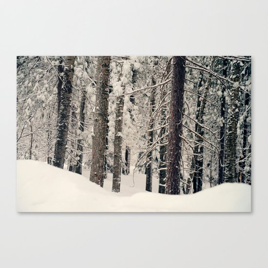 Winter Woods 1 by ninagraff