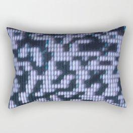 Painted Attenuation 1.2.2 Rectangular Pillow
