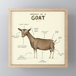 Anatomy of a Goat Framed Mini Art Print