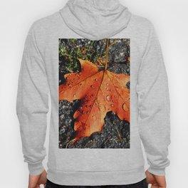 Water Drops On Red Leaf Hoody