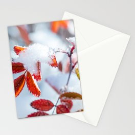 Snowy Fall Leaves // Frozen Fall Colors Stationery Cards