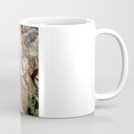 Life in Nature Coffee Mug