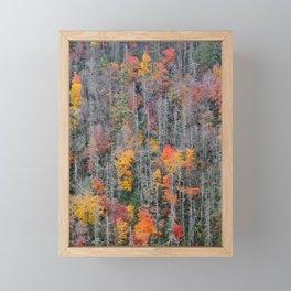 Fall Foliage, Autumn Forest Framed Mini Art Print